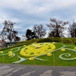 sttt_2020_l3_22_Floral Clock2_2048_10